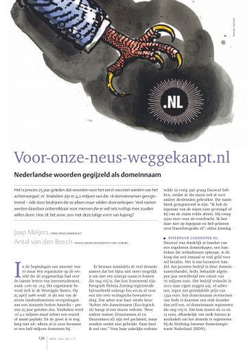 Nederlandse woorden gegijzeld als domeinnaam